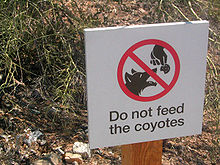 do not feed coyote sign