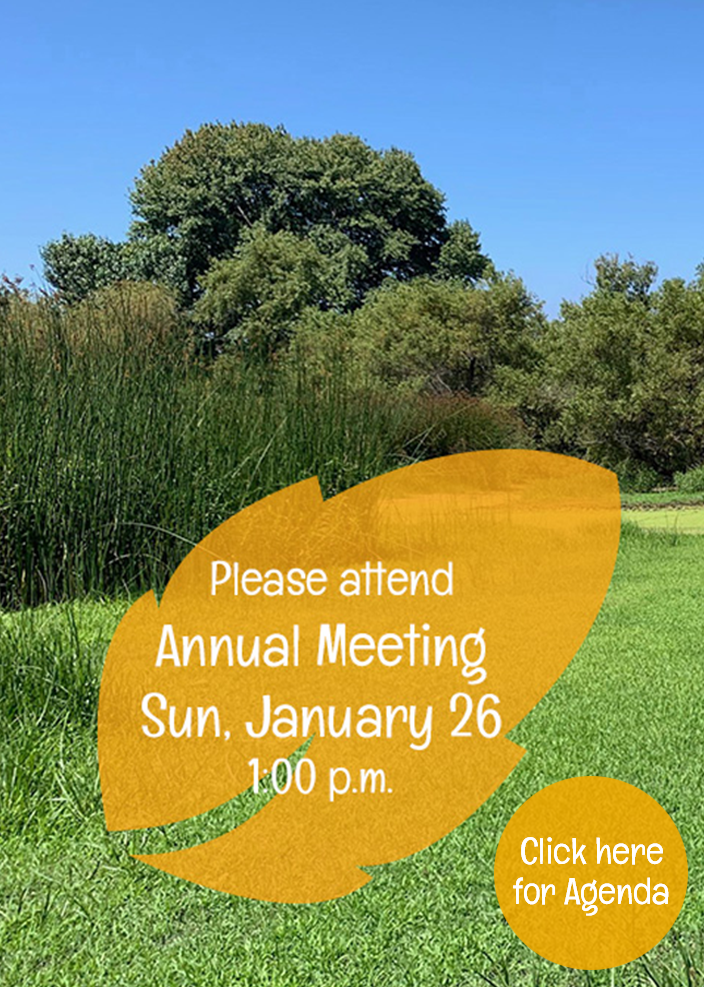Attend 2020 Friends of Madrona Marsh Annual Meeting